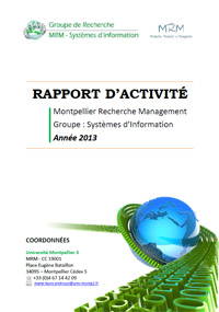 SI-rapport_activite_2013
